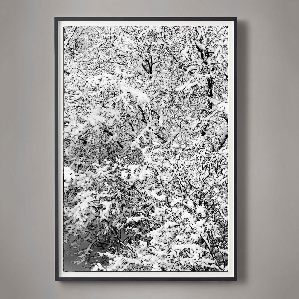black and white snow photograph