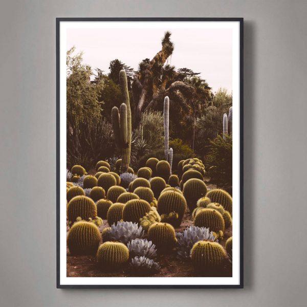 California-Cactus-01-black