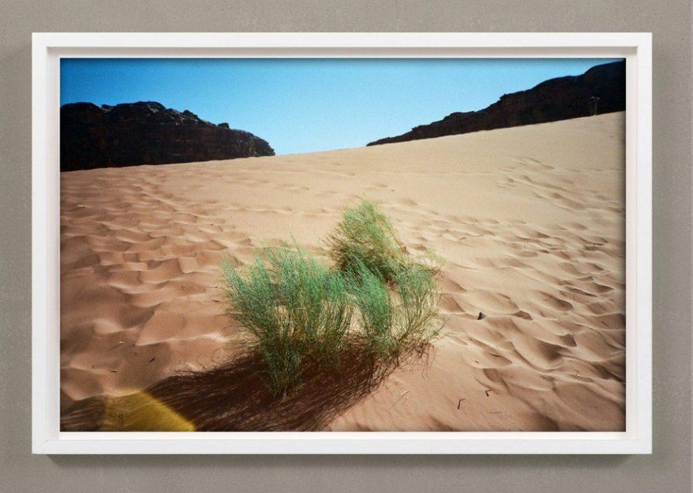 Colorful Desert Photograph