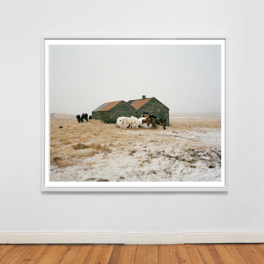 icelandic rustic landscape photograph
