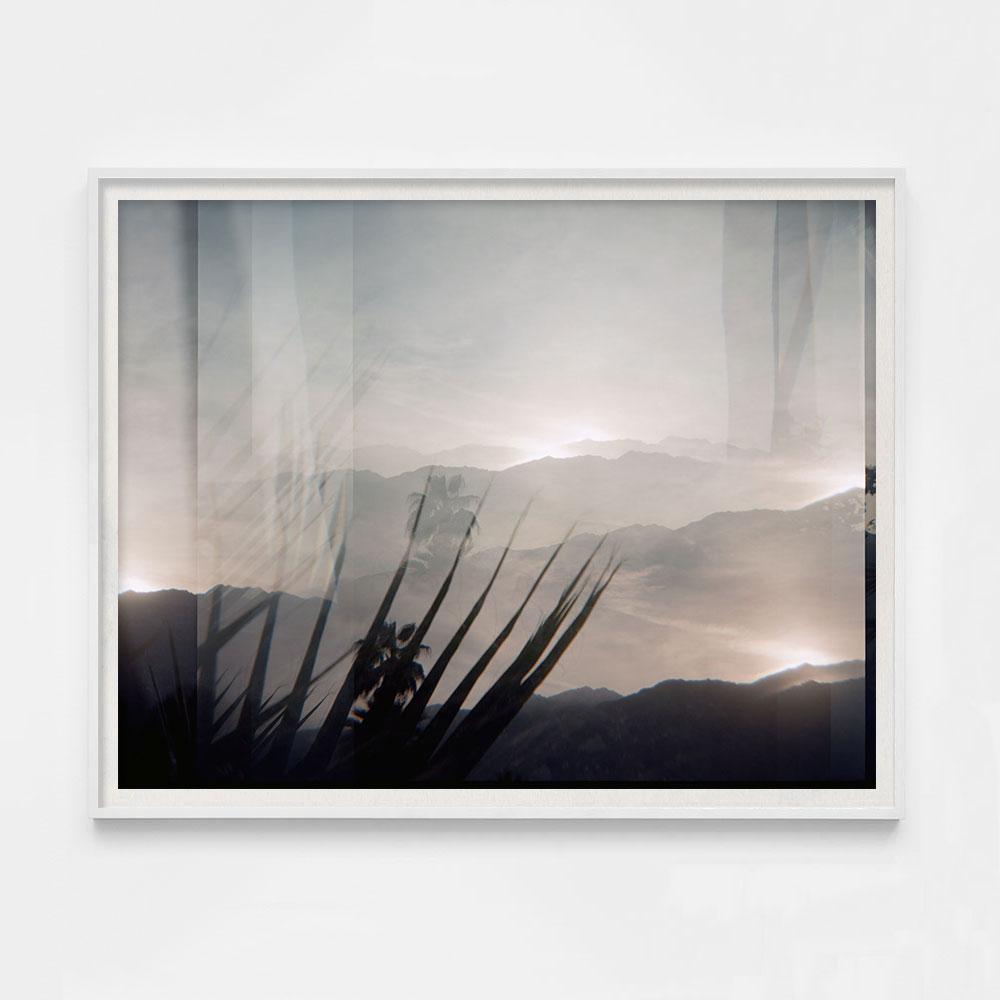 californiadream4-cover