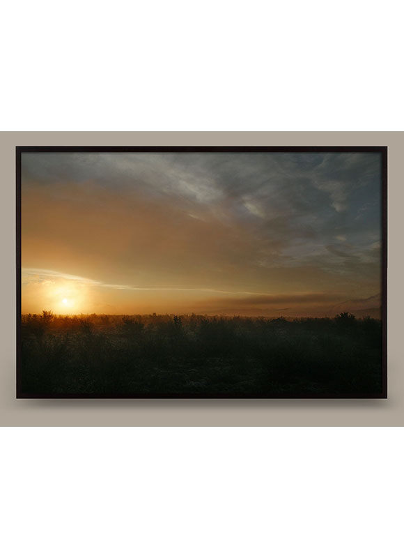 sunscape-01-img