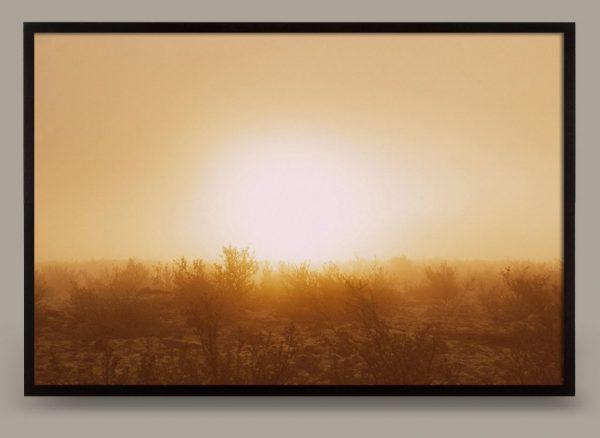 sunscape-02