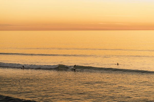 Yellow-surfers-IMGP5571-2