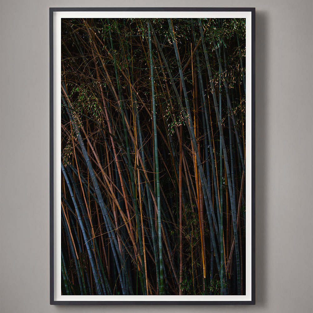 vertical jewel-toned photograph with bamboo
