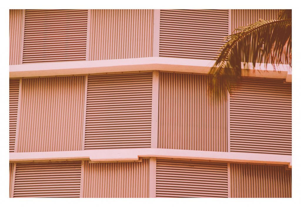 minimal pink grid photograph