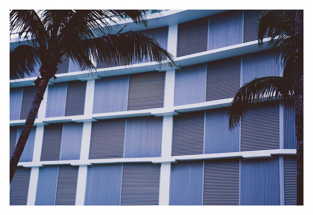 minimal purple grid photograph