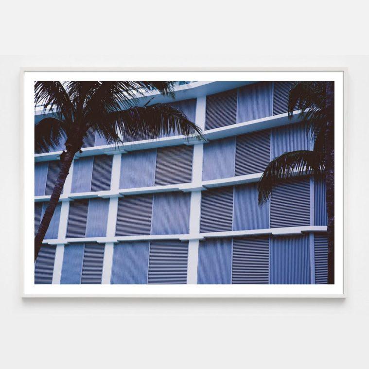 minimal lavender grid photograph