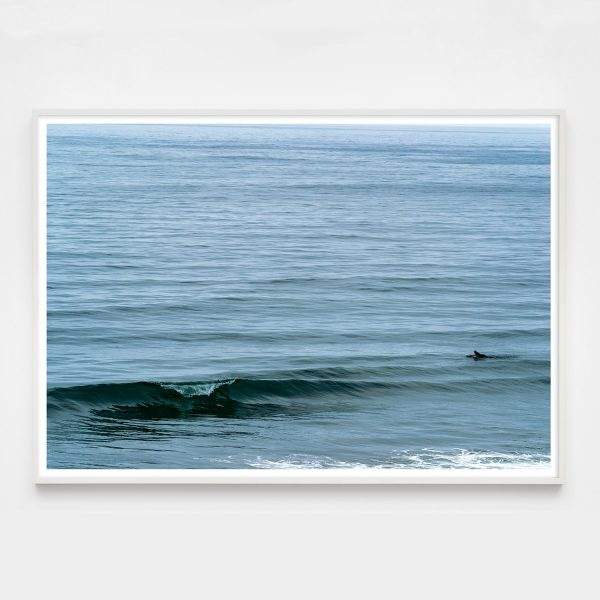 surfer and wave photograph